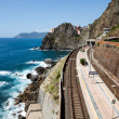 railway station of manarola in cinque terre — Stock Photo