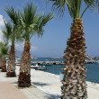 Kardamena resort and port on the island of Kos — Stock Photo