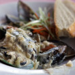 Delicious mussels in cream sauce — Photo