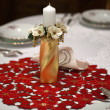 Elegant Christmas table setting — Stockfoto #8249688