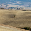 The landscape of the  Tuscany. Italy - 图库照片