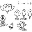 Hand drawn lotus flowers — Stock Vector