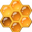 Stock Vector: Honeycomb