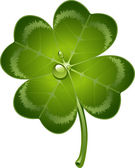 Four-leaf clover — Vetorial Stock