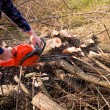 Woodcutter cutting broken tree — Foto Stock