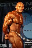 Bodybuilder — Photo