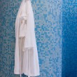 Bathroom with white gown - Stok fotoğraf