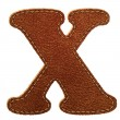 Leather alphabet. Leather textured letter X — Stok Vektör