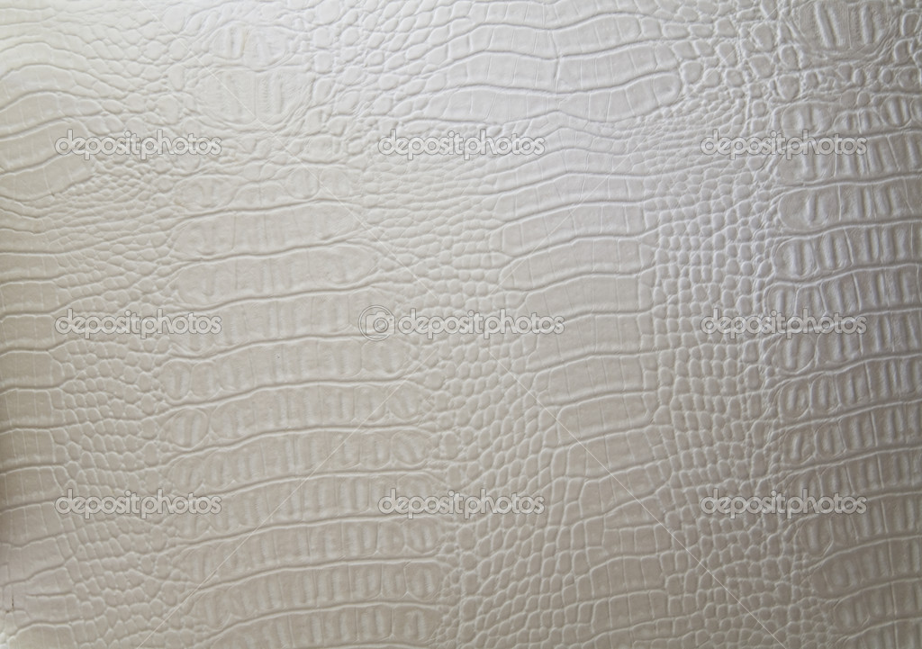 Texture of a genuine luxury white hide  Stock Photo #8842814