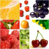 Bagas e outros frutos sobre um fundo branco — Foto Stock