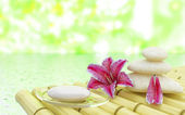 Flowers stones and soap near water in spa salon — Stock Photo