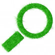Vector illustration of magnifying glass made from grass isolated on white background. — Stock Vector