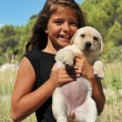 Stock Photo: Puppy labrador and smiling girl