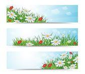 Summer banners — Stock Vector