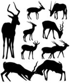 Vector antelopes silhouettes — Stock Vector