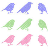 Set of cartoon doodle birds — Vector de stock