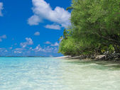 Tropical beach. Maldives — Stock Photo