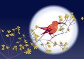 Colibri backdrop of the Moon — Stock Vector