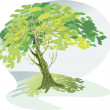 A large green tree — Stock Vector