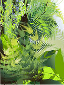 Fern thickets in the jungle — Stock Vector