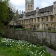 Stock Photo: Oxford college
