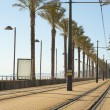 Stock Photo: Alicante tram track