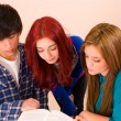 Students over a book — Stock Photo #9761592