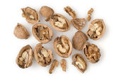 Walnuts Isolated on White — Stock Photo