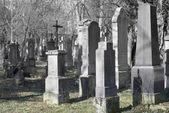 Hřbitov s kříž — Stock fotografie