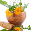 Mortar with herbs and marigolds — Stock Photo