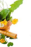 Mörtel mit kräutern und ringelblumen — Stockfoto