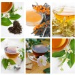 Collection of green and black tea — Stock Photo