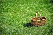 An empty wicker basket on the grass. — Stock Photo