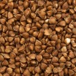 Buckwheat texture — Stock Photo