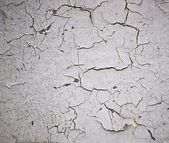 Collection of cracks isolated on white — Stock Photo