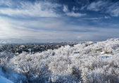 View from the snow-covered mountains in the big city. — Stock Photo