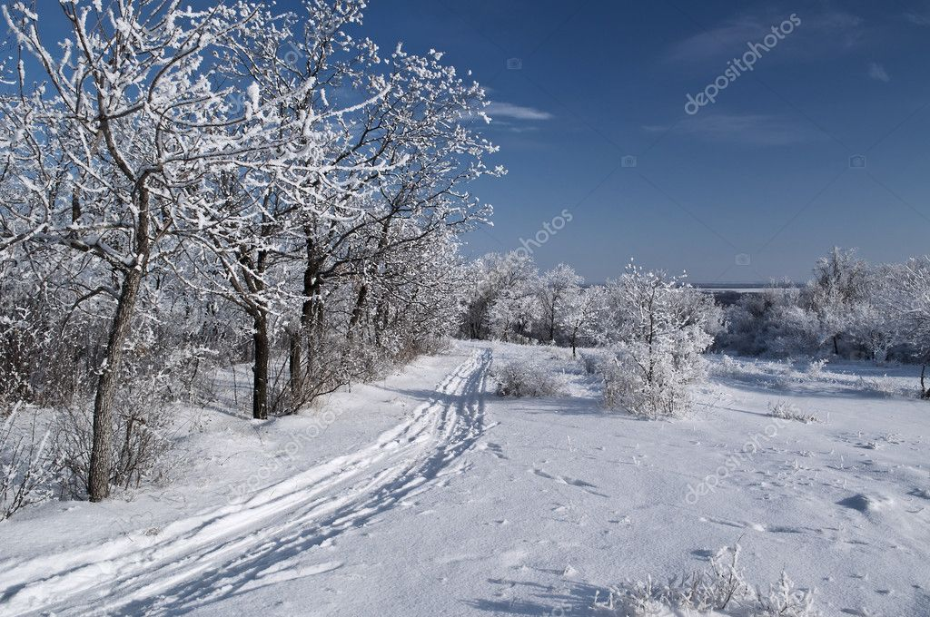 Winter park in snow — Stock Photo #8122228