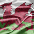 Flag of Wales - Stock Photo