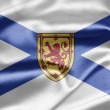 Flag of Nova Scotia - Stock Photo
