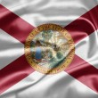 Flag of Florida - Stock Photo