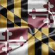Stock Photo: Flag of the state of Maryland
