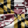 Flag of the state of Maryland - Stock Photo