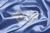 International Civil Aviation Organization (ICAO) — Photo