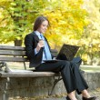 Young  businesswoman working — Stockfoto