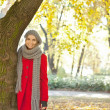 Woman in a romantic autumn park — Stock Photo