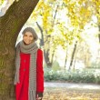 Woman in a romantic autumn park — Stock Photo #8366898