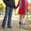 Couple holding hands — Stock Photo #8366899