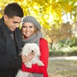 Stock Photo: Autumn walking with dog