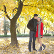 Young couple under autumn tree — Stock Photo