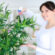 Stock Photo: Beautiful womcares for her flowers